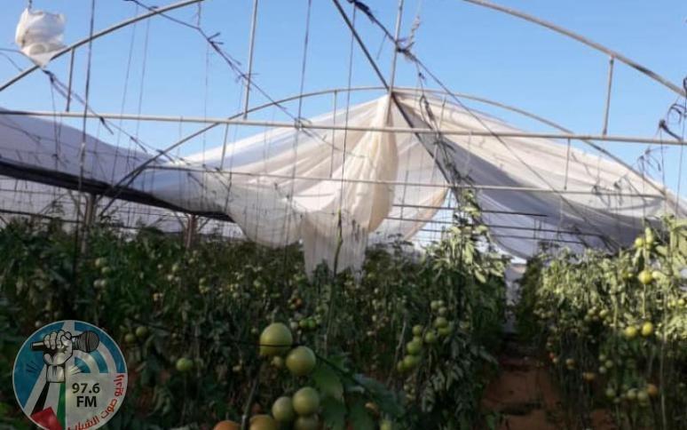 وزير الزراعة يعلن تقديم مساعدات عينية للمزارعين المتضررين من المنخفضات الجوية الأخيرة