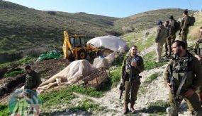 الاحتلال يخطر بوقف العمل في بركس زراعي في طوباس