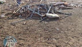 قوات الاحتلال تهدم مسكنا في الجفتلك بالأغوار