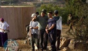 مستوطنون يهاجمون قاطفي الزيتون في برقة جنوب رام الله
