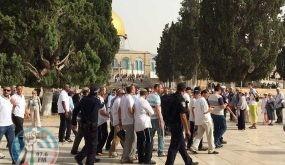 المتطرف غليك يقود اقتحامات المسجد الأقصى